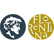 Мойки Флорентина Липси, смесители для кухни Флорентина